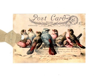 Vintage Birds Gift Tags , Bird Postcard , Blue Birds , Pink Birds , Shabby Tags , All Occasion Tags , Favor Tags , Welcome Bag Tags , Birds