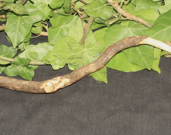Stunning & Rare Cornish Heather Wood Wand  - Love - Hearth Magic - Pagan, Wicca, Wiccan, Witchcraft