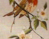 Robin Embroidery kit Vintage Penelope Needlework designed Bird lovers Needlepoint designs