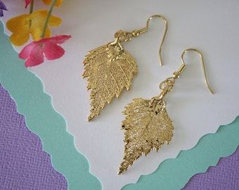 Gold Leaf Earrings, Birch Leaf, Real Leaf Earrings , 24kt Gold, Nature, Organic Earrings, LESM76
