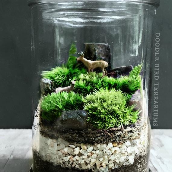 miniature forest moss terrarium with deer. Black Bedroom Furniture Sets. Home Design Ideas