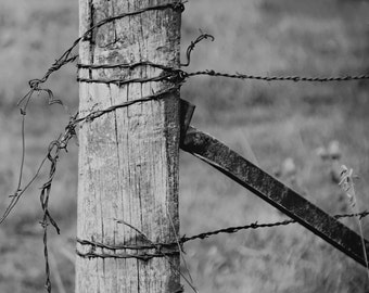 Old fence - nature photography- black and white fence - b & w - old fence post  (5 x 7 Original fine art photography prints) FREE Shipping)