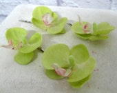 Wedding hair accessories Real touch orchid bobby pins Green orchid Set of 4 Bridal hair accessory