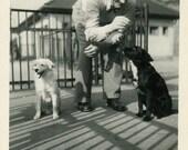 "Vintage Photo ""Feeding the Pups"" Animal Puppy Dog Snapshot Photo Old Antique Photo Black & White Photograph Found Photo Paper Ephemera - 174"