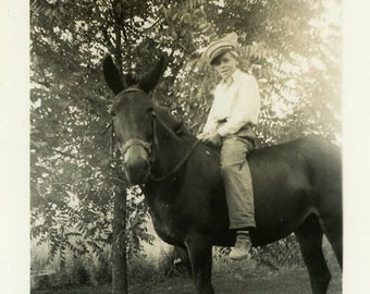 "Vintage Photo ""Bareback Billy"" Mule Farm Animal Snapshot Photo Old Antique Photo Black & White Photograph Found Photo Paper Ephemera - 104"