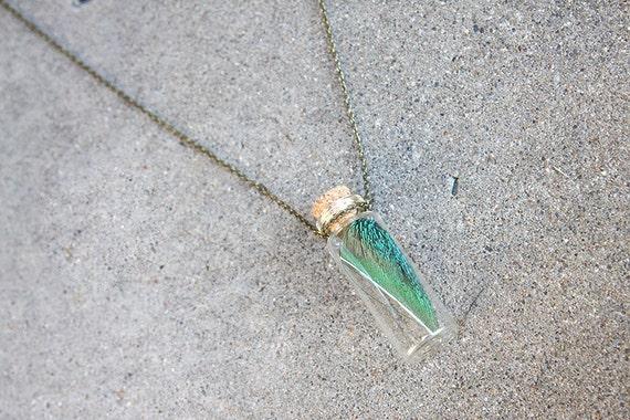 Peacock Spear Feather Glass Bottle Specimen Pendant