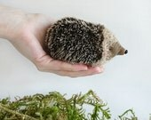 Collectible Forest Hedgehog Villy - 3 inches