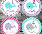 Instant Download: DIY Printable Baby Monthly Stickers- Girl Whales -Baby Milestone Stickers-Photo Prop -Gift -Baby Shower -Just Born