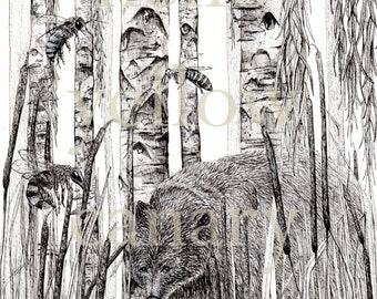 The Bear, The Birch and The Bees - Original Illustration Print by Danielle Brufatto