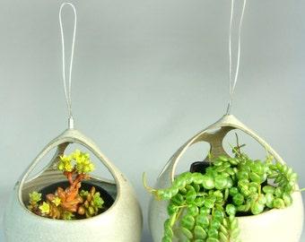 Peek-a-Boo Hanging Planter