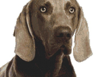 CROSS STITCH KIT- Weimaraner 23cm x 25cm