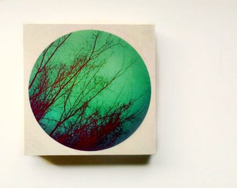 Wood wall art hand-made print on 8x8 Wood Panel art prints on wood original lomography Wood wall art color nature photography