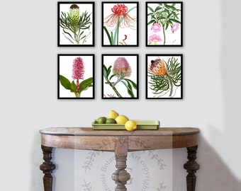Spring decorations Botanical Wall Art prints set of 6 #mix_flora_601 Housewarming Spring Home Decor, Shabby Chic Vintage wall decor