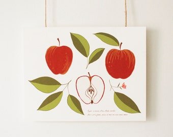 "Botanical Apple Illustration, Fine Art Print, ""The Shape of an Apple"", Vintage Inspired Art, Wall Art, Fruit Drawing"