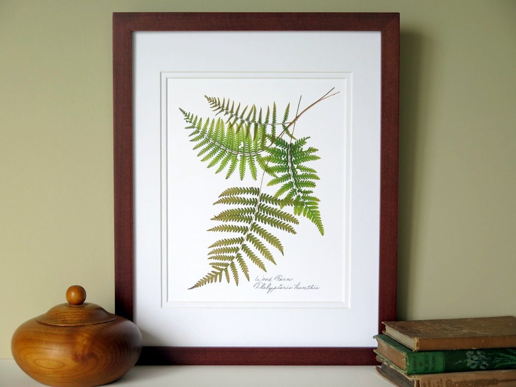 Pressed Fern Print 11x14 Double Matted Wood Ferns Botanical