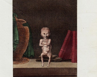 1804 Rare Antique bizarre FETUS  print, engraving, Original antique bizarre anatomy print