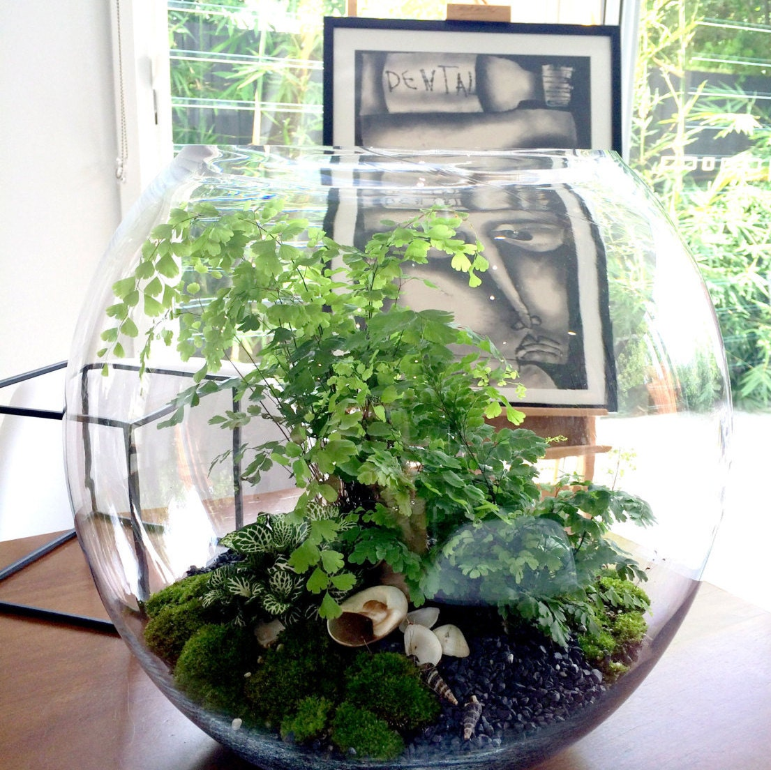 glass terrarium kit indoor garden miniature landscape. Black Bedroom Furniture Sets. Home Design Ideas