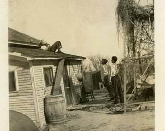 """Vintage Photo """"Sleeping on the Job"""" Men Farm House Snapshot Photo Old Antique Photo Black & White Photograph Found Photo Paper Ephemera - 38"""