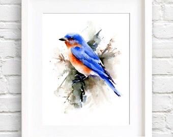Bluebird Art Print - Watercolor Painting - - Signed by Artist DJ Rogers - Wildlife - Wall Decor