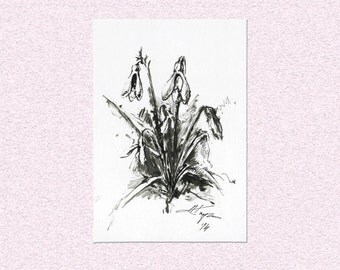 Original ink painting Snowdrop flowers - spring blooming woodland wild plant drawing - wall art illustration
