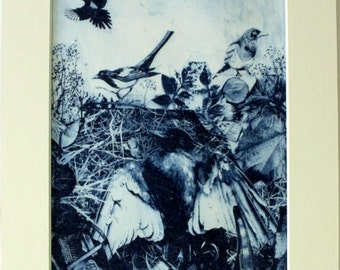Magpies and treasure. Bird print in blue. Photo etching limited edition. Dead bird. Cuerdale Hoard.