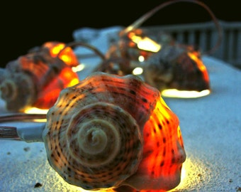 Home Decor Shell Garland Lighting Garland Beach Wedding Decor Party Lighting Nautical Decor Seashell Garland Fairy Light Holiday Lights