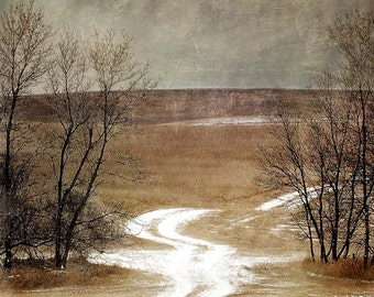 Snowy Path, Fine Art Print, Wall Decor