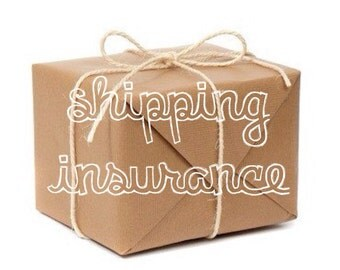 SHIPPING INSURANCE add on for hoop orders.
