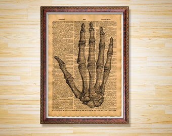 Medical dictionary page Anatomy print Skeleton hand poster