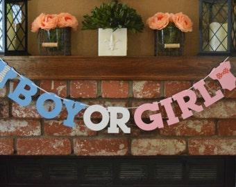 Boy or Girl Banner, Gender Reveal Banner, Gender Reveal Party Decor