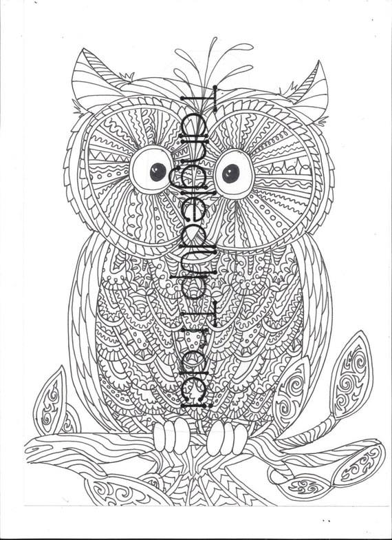 Detailed And Intricate Owl Zentangle Coloring By