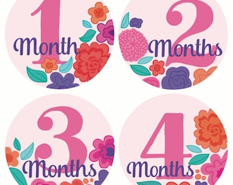 GIFT OFFER, Monthly Baby Sticker Girl, Baby Month Sticker, Flowers, Milestone Sticker, Month by Month Baby Sticker, Baby Gift, Baby Girl