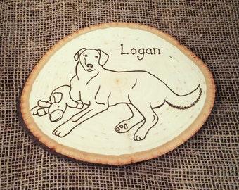 Woodburned Pet portrait. Custom woodburning