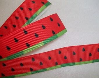 "10Y Watermelon Grosgrain Ribbon 7/8"""