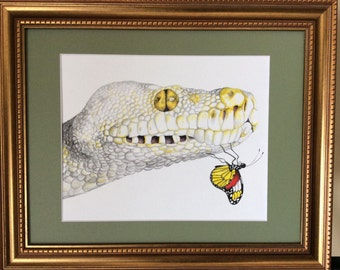 Beauty and the Butterfly. Print of beautiful snake and butterfly.