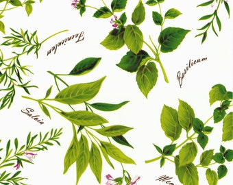 Oilcloth tablecloth bulk herbs B8966-01