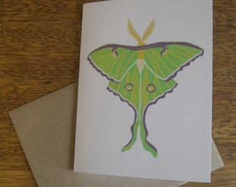 Luna Moth greeting card, blank inside
