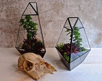 Geometric Terrarium // Planter // Quartz shaped // Two sizes