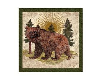 Bear Sign- Rustic Bear Sign