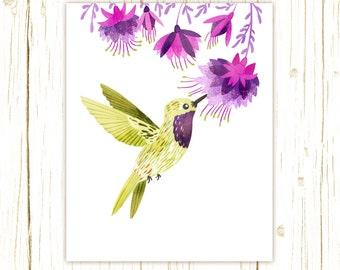 Lucifer Hummingbird Print -- bird art -- bird art 52 birds stephanie fizer coleman illustration fuschia