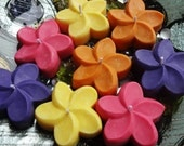 Bulk Plumeria Candle All Natural Soy Set of 25