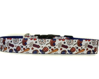 4th of July Celebration 1 Inch Wide Dog Collar with Adjustable Buckle or Martingale