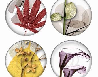 Ikebana Leaf Composition Magnets or Pinback Buttons or Flatback Medallions Set of 4