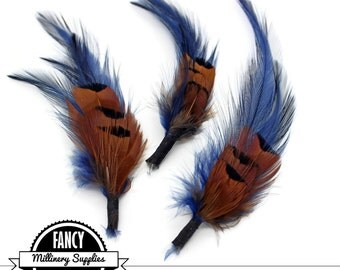 3 - Navy Blue / Rust - Feather Picks - Hackle  - Boutonnieres - Earrings