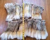 "Dorset 4 Rare Super Long 9"" Staple Crimpy Raw Wool Fleece 10oz"