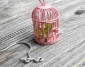 Fairy Garden Cage with Pretty Shepherd's for the Miniature Garden, Fairy Garden or Terrarium, Sweetness
