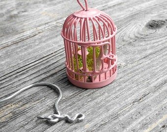 Fairy Garden Cage with Pretty Shepherd's for the Miniature Garden, Fairy Garden or Terrarium, Sweetness