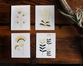 Desert Flowers Card Set