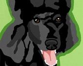 Black Standard Poodle Pop Art Dog Painting Print Colorful