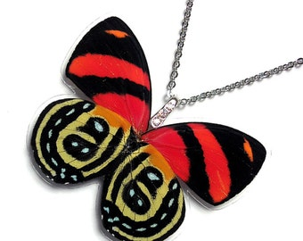 Real Butterfly Wing Necklace / Pendant (WHOLE Red Callicore Cynosura Butterfly - W048)